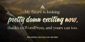 Pull Quote: My future is looking pretty damn exciting now, thanks to WordPress, and yours can too.
