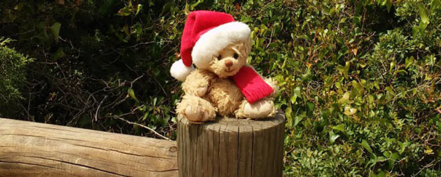 Small plush teddy bear on a stump wearing a Santa hat