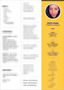 Erica Franz' resume, mostly blurred out