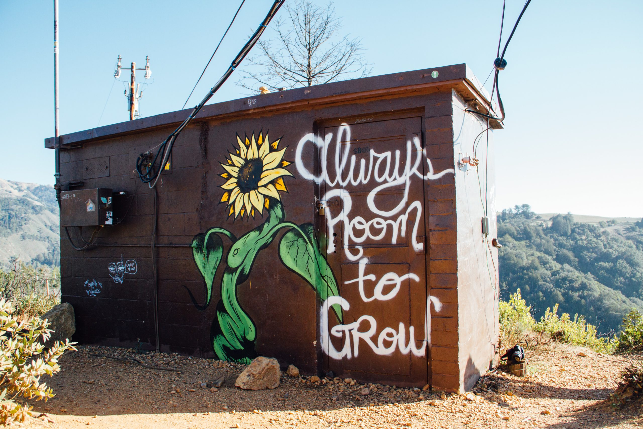 """Shed with a sunflower painted on the side. Text reads, """"Always room to grow."""""""